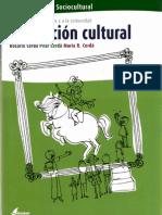 Cfgs Animacion Sociocultural (Animacion Cultural)
