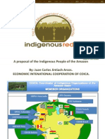 Jintiach- Indigenous REDD_ the Holistic Management of Full Life Territories