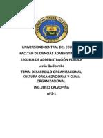 DESARROLLO ORGANIZACIONAL,CULTURA ORGANIZACIONAL Y CLIMAORGANIZACIONAL.