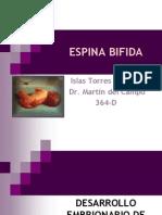 38283019 Espina Bifida