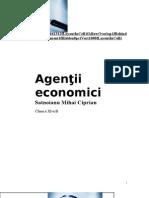 Agentii Economici