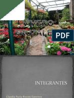 Vivero Frutales (1)