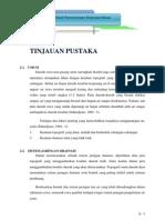 REKLAMASI-2.TINJAUAN PUSTAKA