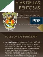 Vias de Las Pentosas