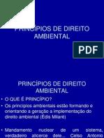 Aula Principios de Direito Ambiental