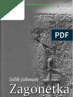 Salih Jalimam - Zagonetka postojanja