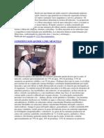 Composicion Bioquimica de La Carne