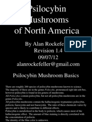 Psilocybin Mushrooms of North America | Psilocybin | Psychedelic Drugs