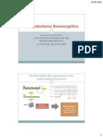 Bioquimica_aula16