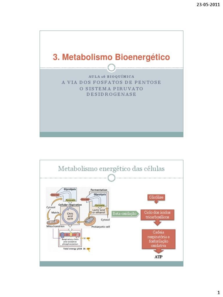 Qué podría Metabolismo hacer que usted cambie