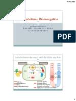 Bioquimica_aula21