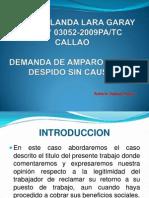 1 Caso Yolanda Garay Exposición