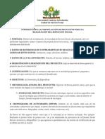 Formato de Proyecto y Memoria Uls2011-1