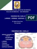 VISCERAS CUELLO-UNMSM[1]
