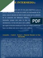 FASE INTERMEDIA Y DE JUICIO EN EL PROCEDIMIENTO ORDINARIO VENEZOLANO