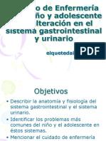 Proceso de enfermería problemas Sistema urinario y GI
