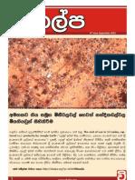 Vikalpa Bulletin - September 2012 | 9th Issue
