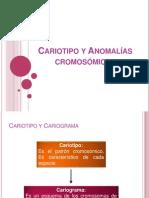 Cariotipo y Anomalías cromosómicas
