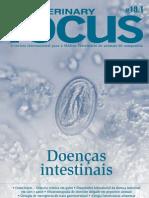 Focus 19.1