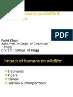 Poaching of Animals