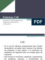 Sistemas CAE