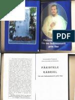 Parintele Gabriel Un Om Indumnezeit Prin Har