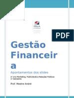 Gestão%20Financeira[1] - Resumo(apontamentos)