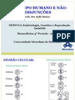 Cariotipo-Humano e Nao-disjuncoes_Biomedicina 4 Periodo