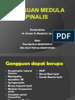Gangguan Medulla Spinalis Copy