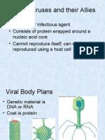 Viruses, Protists) Part II