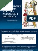 Aula 8- Farmacologia do Sistema Nervoso Autônomo