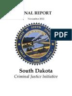 Criminal Justice Initiative Report