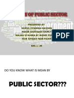 Function of Public Sector