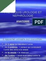 Prerequis Anatomie