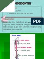 Endodontik 1 (1)