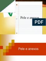PELE E ANEXOS - ANIMAIS