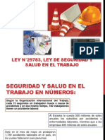 SEguridad Integral 1
