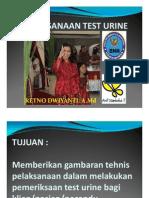 Pelaksanaan Test Urine