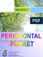 Pdl Pocket