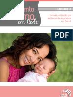 Aleitamento Materno Em Rede