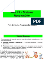 Aula 13 _ Sistema Respiratório