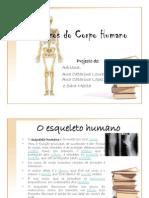 Os ossos