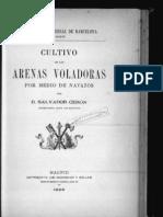 Cultivo de las Arenas Voladoras por medio de Navazos por Salvador Ceron 1888