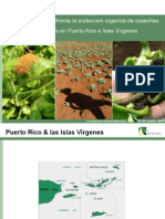 RPluke Puerto Rican Organic Forum 16 Jan 08 Compressed ESP[1]