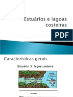 Estuários e Lagoas Costeiras Apresentação