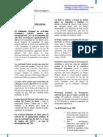 Informe económico Nº11