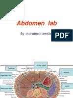 Abdomen Lab