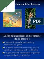 Chapter 17 Fisiología y Morfología Interna de los Insectos