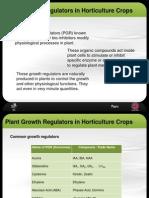 Plant Growth Regulators in Horticulture Crop