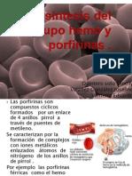 Biosintesis Del Grupo Hemo y Porfirinas (3)